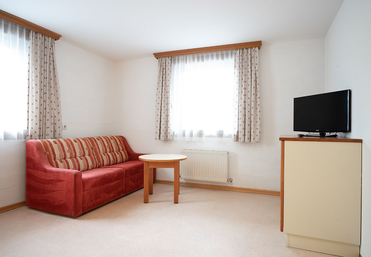 Appartement in Zell am See - Seilergasse mountain view 5